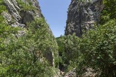 De Kloof van Erma River in zonnige de zomerdag Royalty-vrije Stock Fotografie