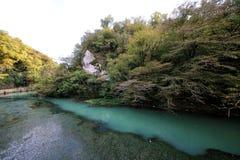 De kloof van de rivier Psyrtsha royalty-vrije stock foto
