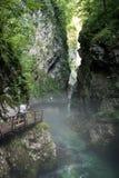 De Kloof van Vintgar in Julian Alpen van Slovenië Stock Fotografie