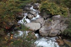 De kloven en moutain de stroom van Mitakeshosenkyo met rode de herfstbladeren Stock Afbeeldingen