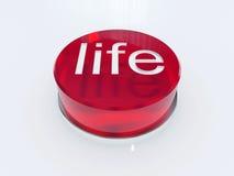 De knoop van het leven Stock Afbeeldingen