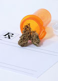 De knop van de cannabis Royalty-vrije Stock Afbeeldingen