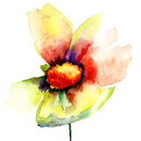 De Knop van gele bloem Stock Afbeeldingen