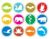 De knopen van dierenpictogrammen Stock Afbeelding