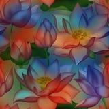 De knoppen en de bloemen naadloos behang van Lotus , De aquatische installatie bloemen grafisch ontwerp van Water lilly nelumbo stock illustratie