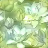 De knoppen en de bloemen naadloos behang van Lotus , De aquatische installatie van Water lilly nelumbo verpakkingsontwerp vector illustratie
