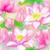 De knoppen en de bloemen naadloos vectorpatroon van Lotus , De aquatische installatie van Water lilly nelumbo verpakkingsontwerp stock illustratie