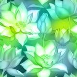 De knoppen en de bloemen naadloze achtergrond van Lotus , De aquatische installatie botanisch ontwerp van Water lilly nelumbo stock illustratie