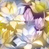 De knoppen en de bloemen naadloze stoffendruk van Lotus , De aquatische installatie botanisch ontwerp van Water lilly nelumbo royalty-vrije illustratie
