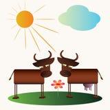 De koe en de stier van het beeldverhaal Stock Afbeeldingen