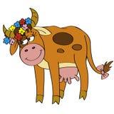 De koe van Cutie Stock Fotografie