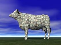 De Koe van het contante geld Stock Foto