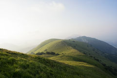 De koeien weiden op een mooi berglandschap bij zonsondergang Royalty-vrije Stock Foto's