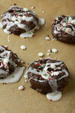 De Koekjes van chocoladekerstmis Royalty-vrije Stock Foto's