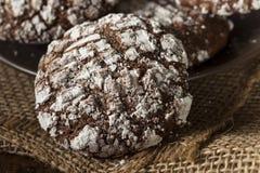 De Koekjes van de chocoladekreuk met Gepoederde Suiker Royalty-vrije Stock Afbeeldingen