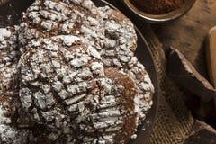 De Koekjes van de chocoladekreuk met Gepoederde Suiker Royalty-vrije Stock Fotografie