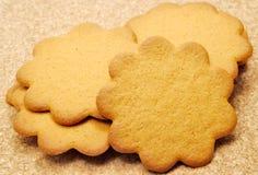 De koekjes van de gember Stock Afbeelding