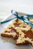 De koekjes van de peperkoek royalty-vrije stock foto