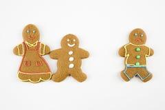 De koekjes van de peperkoek. Royalty-vrije Stock Afbeeldingen