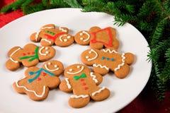De koekjes van de peperkoek Royalty-vrije Stock Afbeeldingen