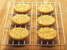 De koekjes van de sesam Stock Foto's