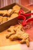 De koekjes van het rendier Stock Afbeelding