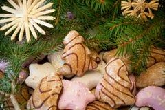 De koekjes van Kerstmis met spar stock foto