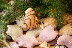 De koekjes van Kerstmis met spartakken stock afbeeldingen