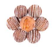 De koekjes van koekjes Royalty-vrije Stock Afbeelding