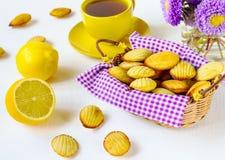 De koekjes van Madeleine Royalty-vrije Stock Fotografie