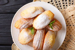 De koekjes van Madeleine met gepoederde suiker en muntclose-up op een pla Stock Afbeelding