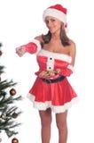 De Koekjes van Mevr. Santa's royalty-vrije stock foto's