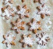 De Koekjes van de peperkoek voor Kerstmis Stock Afbeeldingen