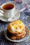 De koekjes van Ricotta en van de rozijn Royalty-vrije Stock Afbeeldingen
