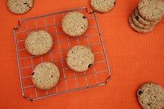 De koekjes van de rozijnenspaander Royalty-vrije Stock Foto