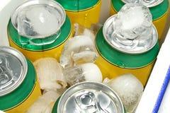 De Koeler van dranken Stock Foto