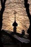 De koepel van de kerk en de takken met bomen in de voorgrond stock foto's