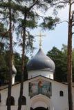 De koepel van de Tempel van de Heilige Martelaar Vladimir stock foto