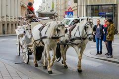 De koetsier geeft een rondleiding in het centrum van Wenen, Oostenrijk Royalty-vrije Stock Afbeelding