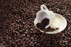 De koffie Royalty-vrije Stock Foto