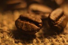 De koffie bracht geroosterd korrelclose-up, bruine kleur op smaak stock afbeelding