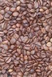De koffie. De korrel. Stock Foto