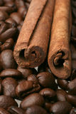 De koffie van het kruid Stock Afbeeldingen