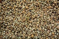 De koffiebonen van Luwak stock afbeelding