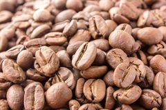 De koffiebonen zijn overal verspreid de oppervlakte stock fotografie