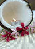 De kokosnoot van het Concept van het kuuroord met bloemen Stock Fotografie