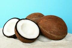 De kokosnoot van het fruit Stock Foto