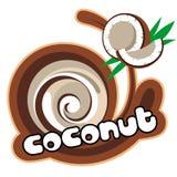 De Kokosnoot van het roomijs Royalty-vrije Stock Foto