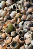 De Kokosnoten van het afval Stock Afbeeldingen