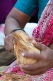 De kokosnoten van Pealing Stock Foto's